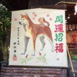 2030年戌年(いぬ年)の初詣は犬の神社「伊奴神社」に行こう